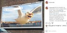 「フライドポテトに食いつくカモメの写真」がGoogleの最新広告塔に! 驚きの撮影者「最初は冗談かと思った」(英)
