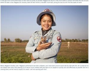 【海外発!Breaking News】人間の約200倍のスピードで地雷捜索したネズミ 5年間尽力し引退(カンボジア)<動画あり>