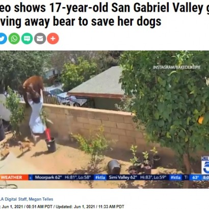 【海外発!Breaking News】愛犬を襲う子連れのクマに猛突進、ブロック塀から突き落とした17歳女性(米)<動画あり>
