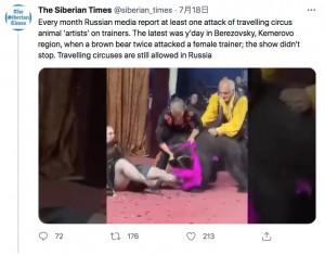 女性調教師に突然襲いかかったクマ(画像は『The Siberian Times 2021年7月18日付Twitter「Every month Russian media report at least one attack of travelling circus animal 'artists' on trainers.」』のスクリーンショット)