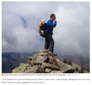 たくさんの山を一緒に登ってきたカルロスさんとモンティ(画像は『WalesOnline 2021年7月7日付「Man pushed his dying dog up Pen y Fan in a wheelbarrow for 'one last adventure together'」(Image: Carlos Fresco)』のスクリーンショット)