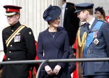 【イタすぎるセレブ達】ヘンリー王子はメーガン妃との結婚前から王室に不満を抱いていた 「なんで僕ではだめなの?」