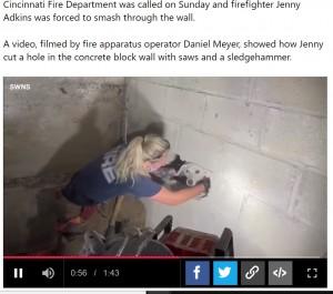 【海外発!Breaking News】「鳴き声がする」と壁を破壊、5日間行方不明だった犬が救出される(米)<動画あり>