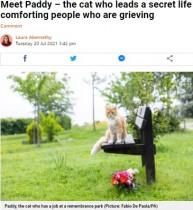 葬儀場で悲しむ人を癒し続ける猫、飼い主も数年は気付かず(英)