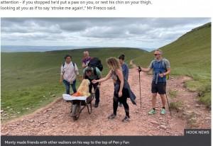 多くの人がカルロスさんとモンティの最後の旅を手伝ってくれた(画像は『BBC 2021年7月8日付「Sick dog takes final walk in wheelbarrow」(HOOK NEWS)』のスクリーンショット)