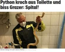 【海外発!Breaking News】早朝のトイレで珍事件 65歳男性が便座でニシキヘビに急所を噛まれる(オーストリア)