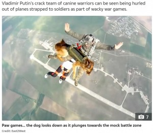 【海外発!Breaking News】露の軍用犬高度4000メートルから大空へ 「全く取り乱さず」将来的には8000メートル目標に<動画あり>