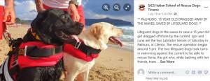 【海外発!Breaking News】2頭の海難救助犬とハンドラーが大活躍、沖に流される少女を救う(伊)<動画あり>