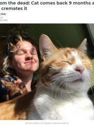 【海外発!Breaking News】行方不明だった愛猫の訃報が届き火葬するも、9か月後に発見の知らせ 「他人の猫を火葬してしまった」(カナダ)