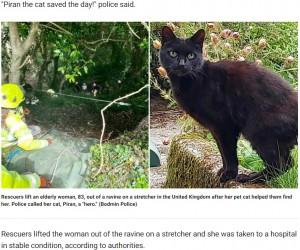 【海外発!Breaking News】行方不明の83歳女性の捜索が難航 ペットの黒猫が鳴き続け発見に一役買う(英)