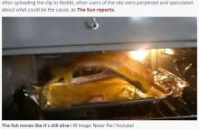 【海外発!Breaking News】魚の切り身がオーブン内を暴れ回る! 「まるでエクソシストのワンシーン」<動画あり>