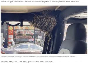 【海外発!Breaking News】わずか10分で車内にミツバチの大群 困った運転手に養蜂家が「もらってもいい?」と素手で捕まえる(豪)<動画あり>