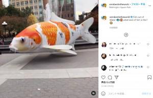 噴水の前を悠々と泳ぐ大きな鯉(画像は『Vernon James Manlapaz 2019年12月29日付Instagram「Fish out of Water」』のスクリーンショット)