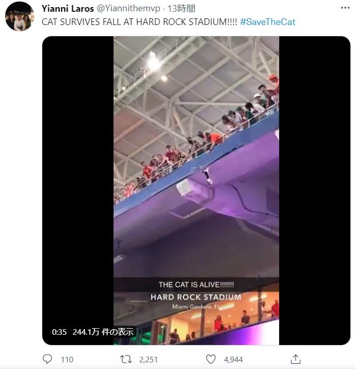 2階デッキの手すりで危機に陥った猫(画像は『Yianni Laros 2021年9月12日付Twitter「CAT SURVIVES FALL AT HARD ROCK STADIUM!!!!」』のスクリーンショット)