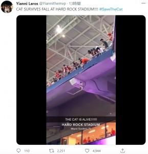 観客が救出しようとするも手が届かず(画像は『Yianni Laros 2021年9月12日付Twitter「CAT SURVIVES FALL AT HARD ROCK STADIUM!!!!」』のスクリーンショット)