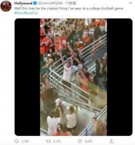 無事だった猫は観客の大歓声を浴びた(画像は『Hollywood 2021年9月12日付Twitter「Well this may be the craziest thing I've seen at a college football game」』のスクリーンショット)