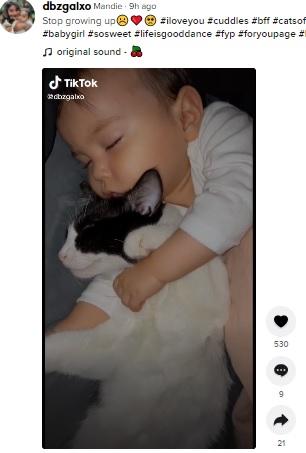 女の子のそばで眠る子ネコ(画像は『Mandie 2021年9月7日付TikTok「Stop growing up」』のスクリーンショット)