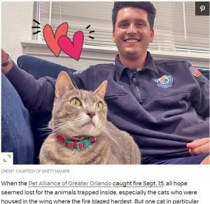 【海外発!Breaking News】大規模な火災現場から生還した猫 救助した消防士に引き取られて幸せに(米)
