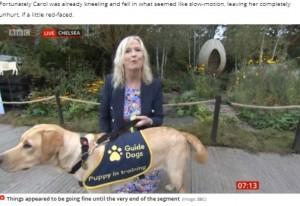 【海外発!Breaking News】「さすがプロ!」BBCの気象キャスター、生中継中に盲導犬に引っ張られ転倒も笑顔で対応(英)<動画あり>