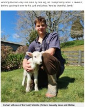 【海外発!Breaking News】大岩の下に閉じ込められた子羊を14歳少年が発見し救出 「第六感が働いた」(ニュージーランド)<動画あり>