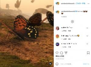 視界の悪い山の斜面で巨大な蝶が飛び交う(画像は『Vernon James Manlapaz 2020年10月18日付Instagram「Not real」』のスクリーンショット)