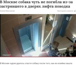 【海外発!Breaking News】エレベーターでリードに繋がれたまま犬が宙吊り 飼い主は全く確認せず(露)<動画あり>