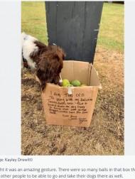 【海外発!Breaking News】散歩中に見つけた老犬からのプレゼント 温かいメッセージが飼い主同士の交流へ(英)