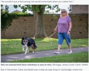 【海外発!Breaking News】9か月間一緒に過ごした愛犬が盲目と分かり驚愕「第六感が働いているのかも」(英)