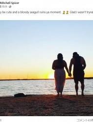 【海外発!Breaking News】夕日をバックにロマンチックな動画を撮影 完璧なタイミングで邪魔したカモメに大笑い(豪)<動画あり>