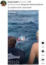 海のど真ん中で迷子になった子犬、通りかかったボートに救出される(米)<動画あり>