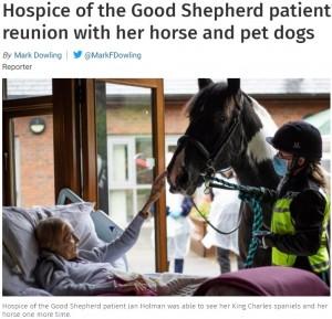 【海外発!Breaking News】余命僅かの女性が願った最後の面会 愛馬の姿を見て笑顔に(英)
