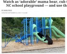 【海外発!Breaking News】滑り台で遊ぶ野生のクマの親子 子の安全を配慮する姿が人間そっくり(米)<動画あり>