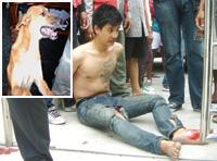 【アジア発!Breaking News】逃走中、犬に襲われたひったくり犯(タイ)